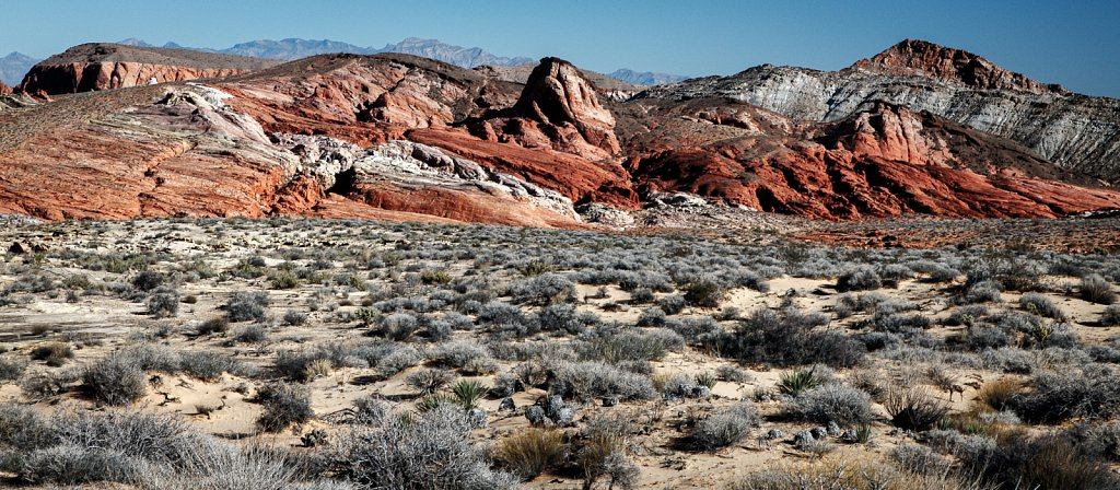 Valley-of-Fire-Nov-2015-20151107-100105-0614.jpg