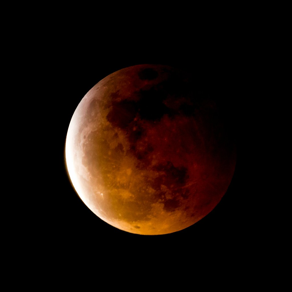 Lunar-Eclipse-Jan-20-2019-20190120-224617-0084.jpg